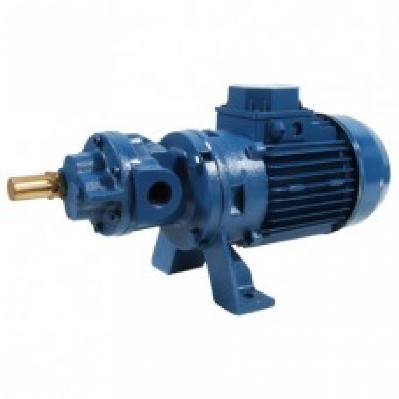 GMP Gear Self Priming Surface Mounted Electric Pumps Products Link