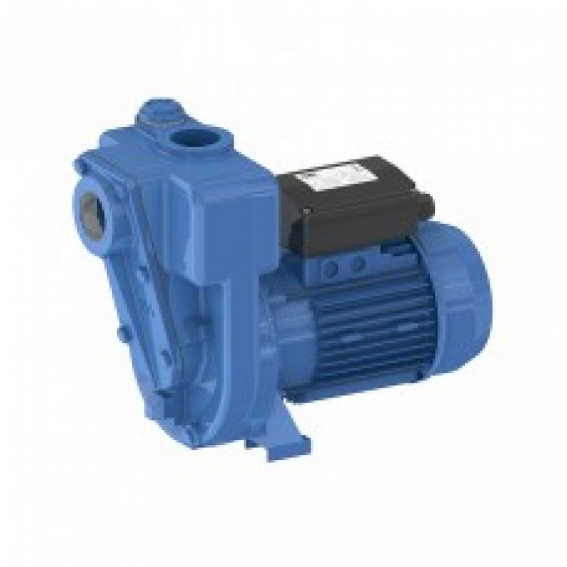 GMP Cast Iron Self Priming Surface Mounted Electric Pumps Products Link