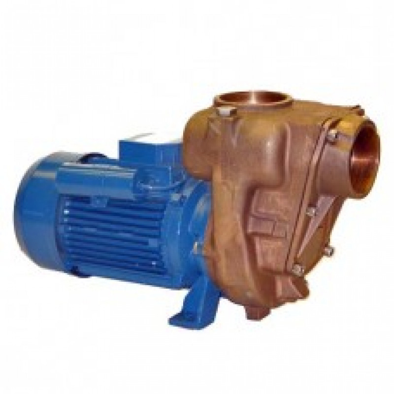 GMP Bronze Self Priming Surface Mounted Electric Pumps Products Link