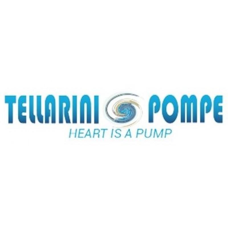 Tellarini Pumps